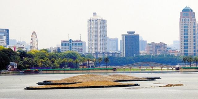 南宁南湖公园四个生态岛雏形初显 你期待吗?