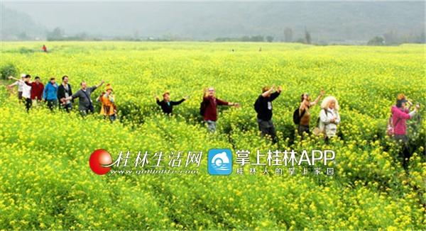 双赢彩票网可靠吗:2017桂林休闲农业旅游收入已达到50亿元