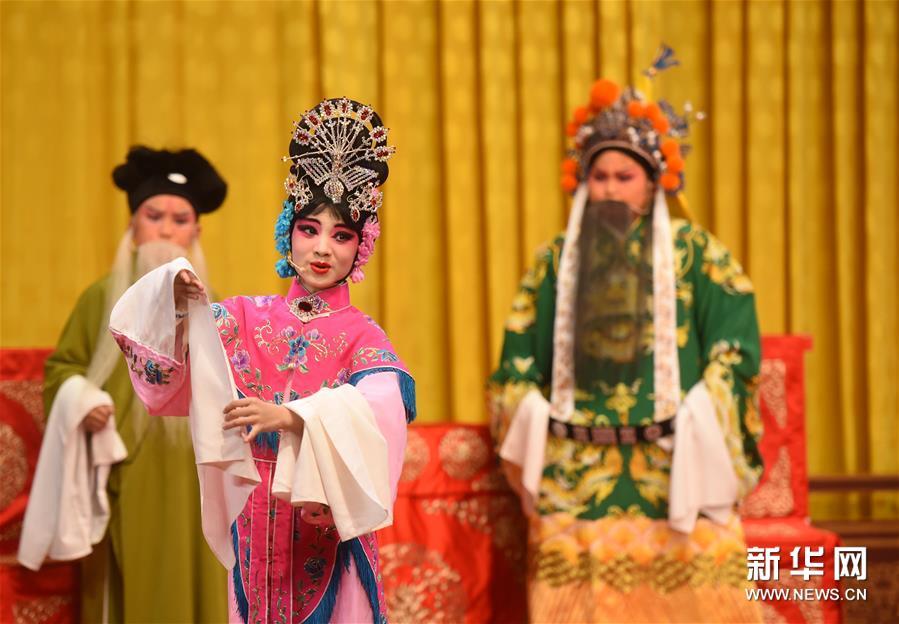 """(文化)(3)2018国家大剧院""""青少年普及音乐会""""首场上演"""