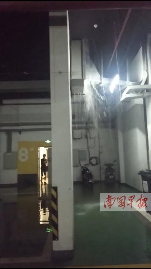 """6月4日焦点图:一场大雨致小区内涝 电梯成""""水帘洞"""""""