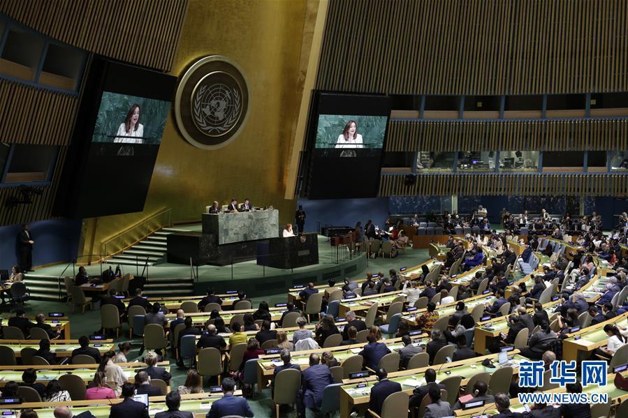 (国际)(2)厄瓜多尔外长当选第73届联合国大会主席