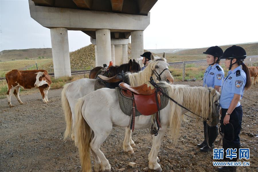 (社会)(4)草原骑警队:铁路沿线守卫者