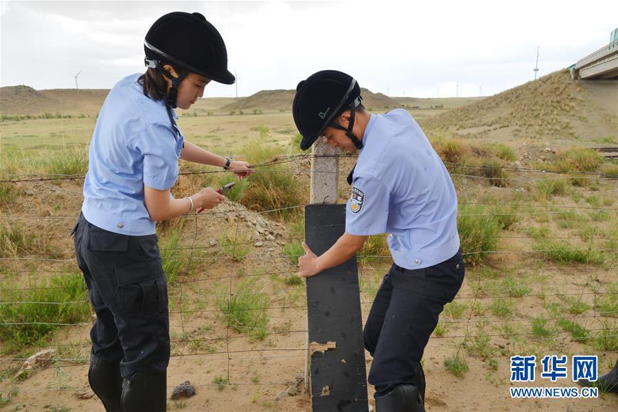 (社会)(2)草原骑警队:铁路沿线守卫者