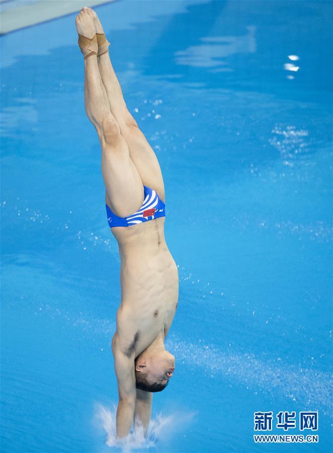 (体育)(6)跳水――世界杯:陈艾森获得男子十米跳台冠军