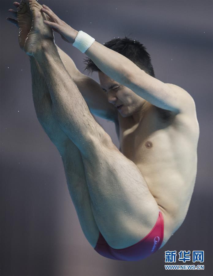(体育)(1)跳水――世界杯:混合全能赛况