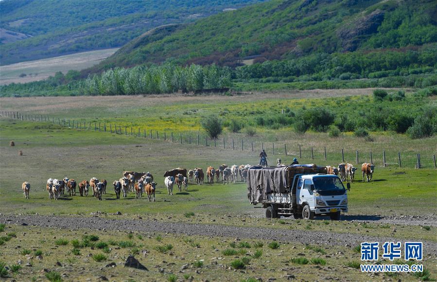 (图片故事)(6)阿鲁科尔沁草原上的游牧迁徙
