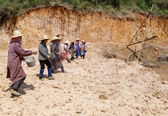 天等县对全县内的废弃矿山、生产矿山进行复绿