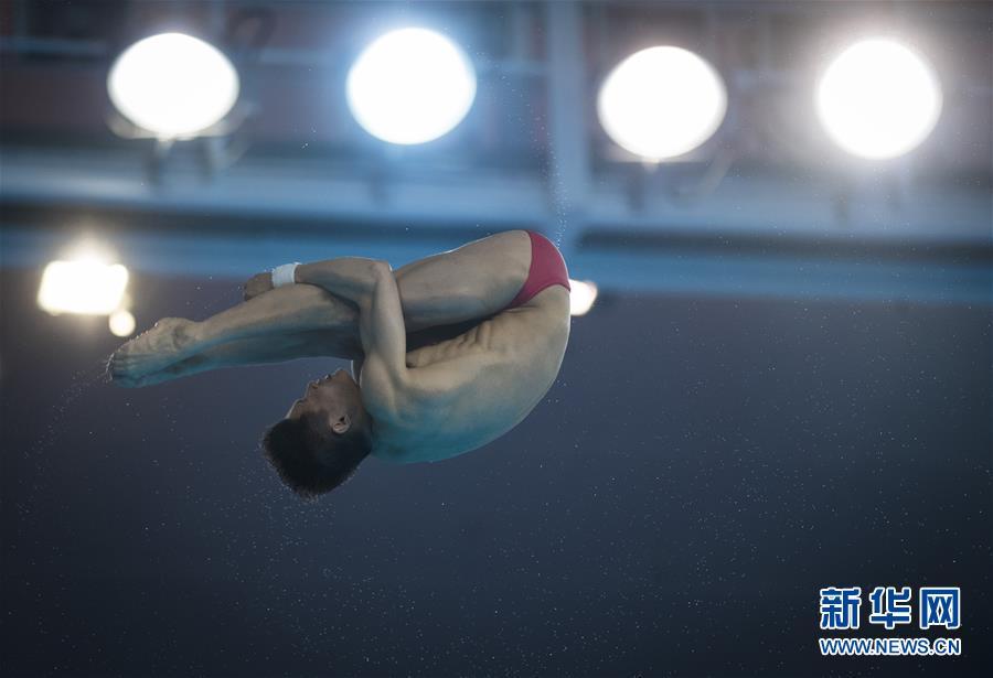 (体育)(2)跳水――世界杯:男子十米跳台赛况