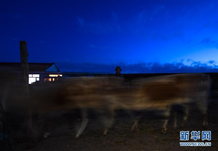 (图片故事)(3)阿鲁科尔沁草原上的游牧迁徙