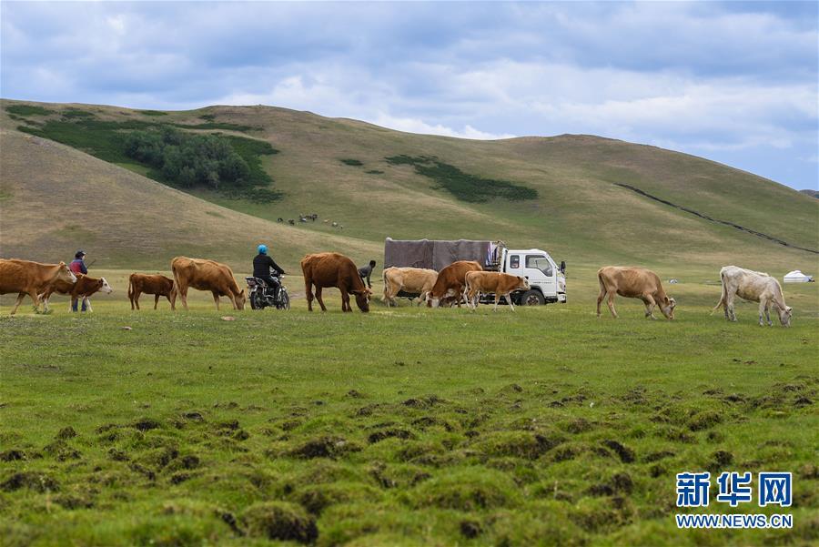 (图片故事)(11)阿鲁科尔沁草原上的游牧迁徙