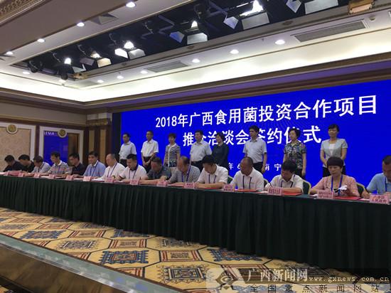 2018年广西食用菌投资合作推介洽谈会在南宁召开