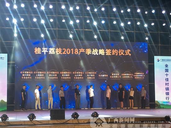 广西桂平市举办荔枝产销大会 共谋荔乡发展
