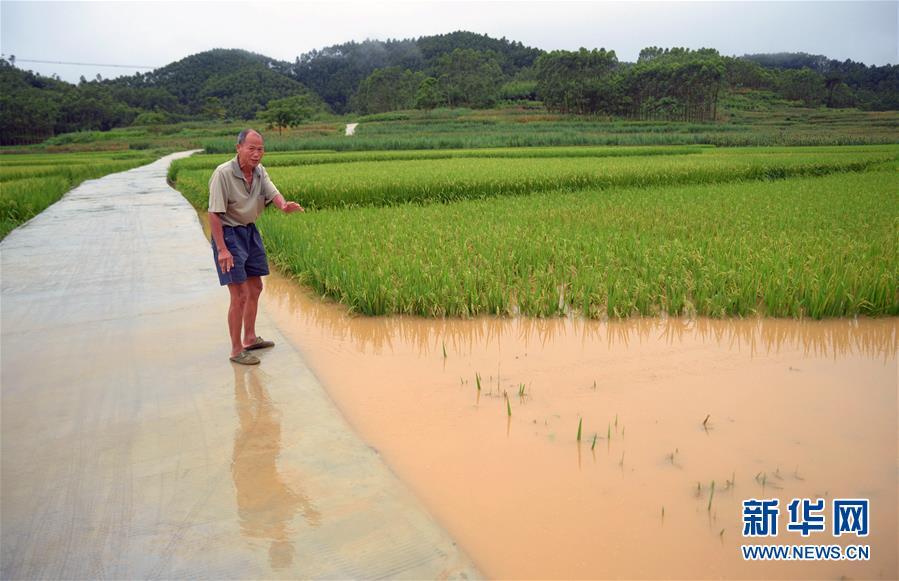 #(环境)(4)强降雨造成广西9万多人受灾