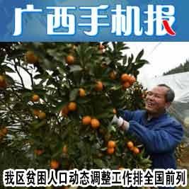 广西手机报7月9日