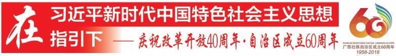 广西沿边金融综合改革试验区建设扫描
