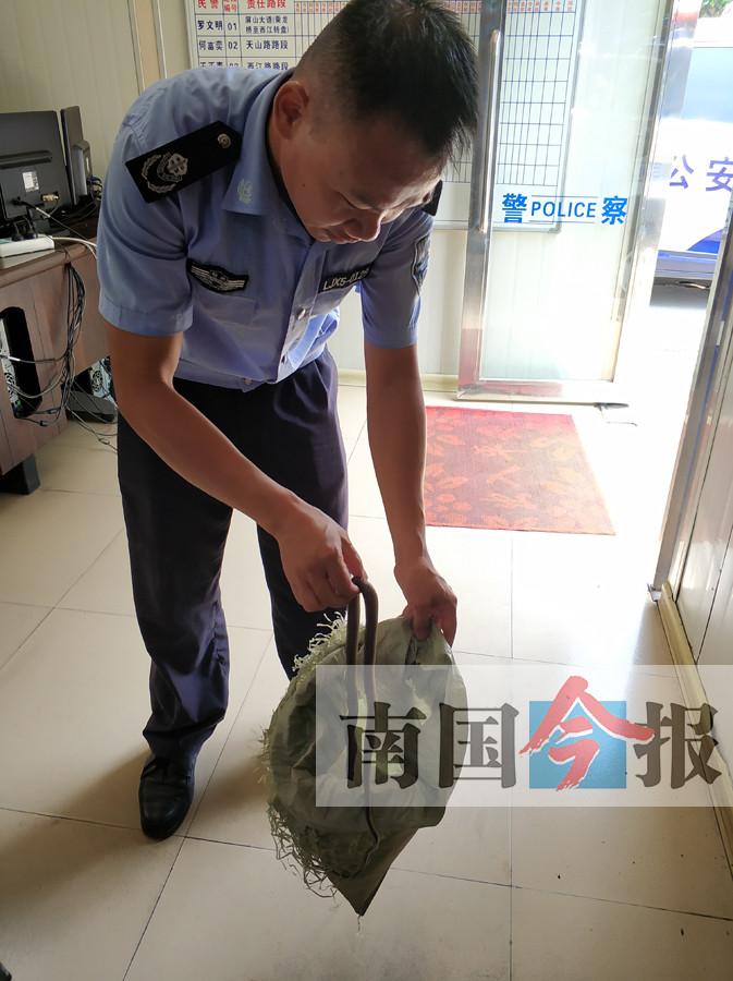 柳州一套闲置房频遭骚扰 门把手上挨人挂袋蛇(图)