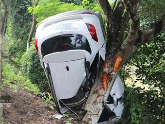 小车飞出护栏撞上大树 驾驶员不幸身亡