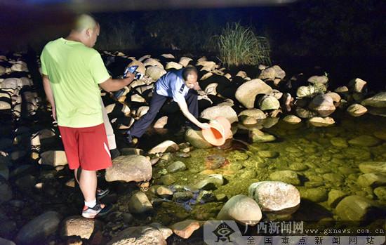 上思:警民联手打起野生娃娃鱼保卫战