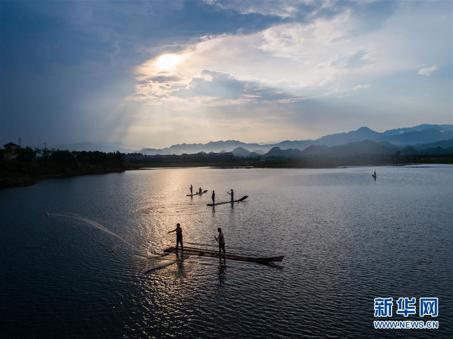 千岛湖开渔展现水清鱼欢美丽生态