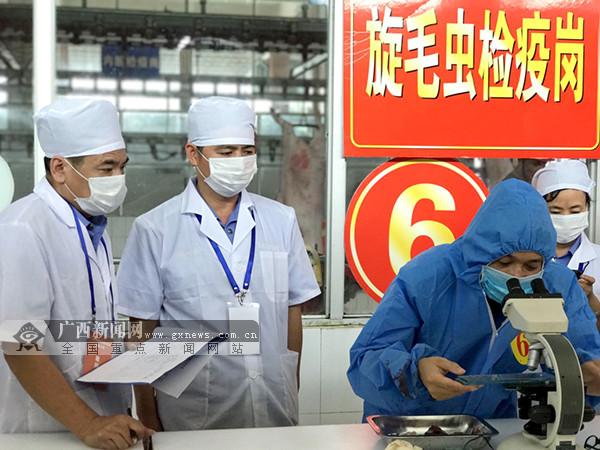 广西:动物检疫检验员比拼技能 把好猪肉质量安全关