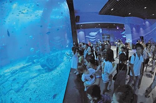广西首个极地海洋世界18日迎客 感受南北两极风光