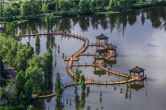 观音塘湿地公园 璧山区旅游发展中心供图 华龙网发