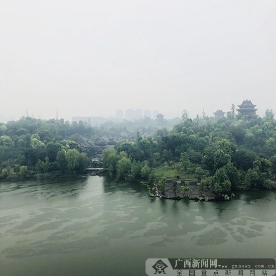 网媒记者走进璧山秀湖公园  烟雨朦胧美如画