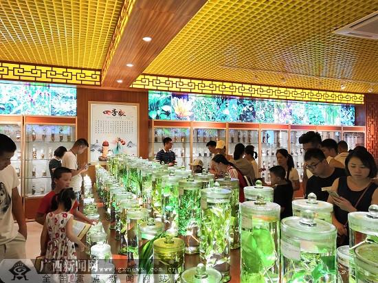 第十届中国(玉林)中医药博览会9月14日-16日举行