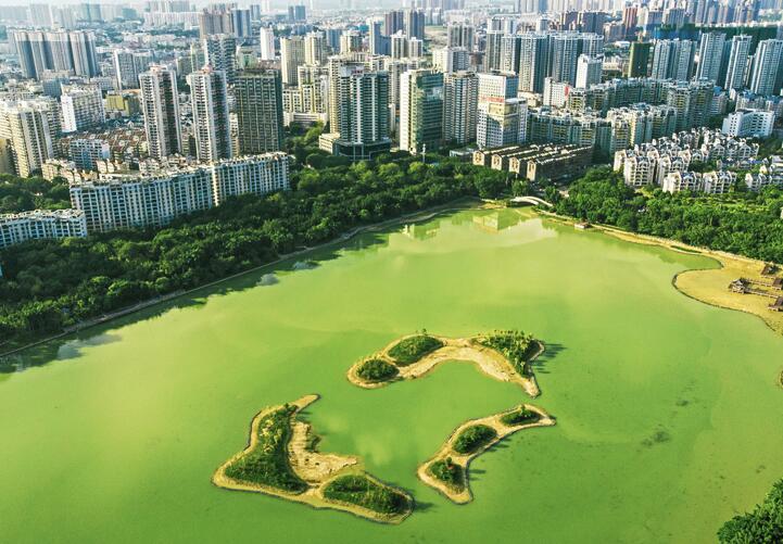 26日焦点图:南宁南湖公园生态鸟岛陆续修筑完成