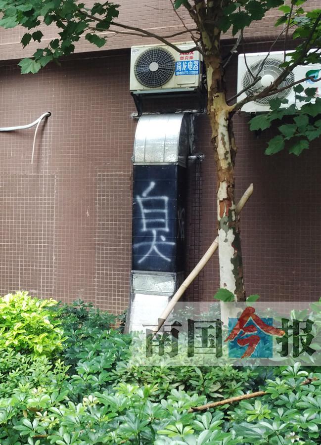 """9月30日焦点图:游客在南宁动物园遭""""猿粪""""袭击_广西网"""