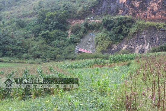 靖西一货车坠下60米悬崖致一人被困 消防紧急救援