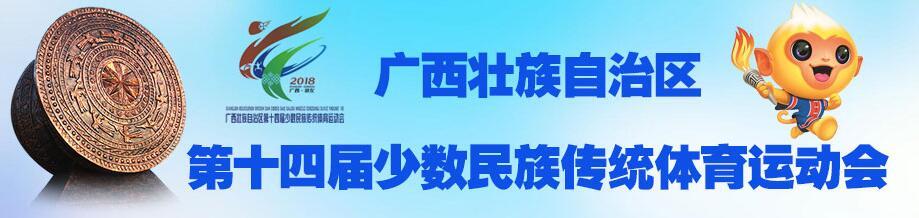 广西第十四届少数民族传统体育运动会