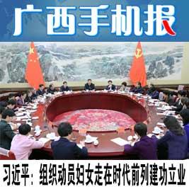 广西手机报11月3日上午版