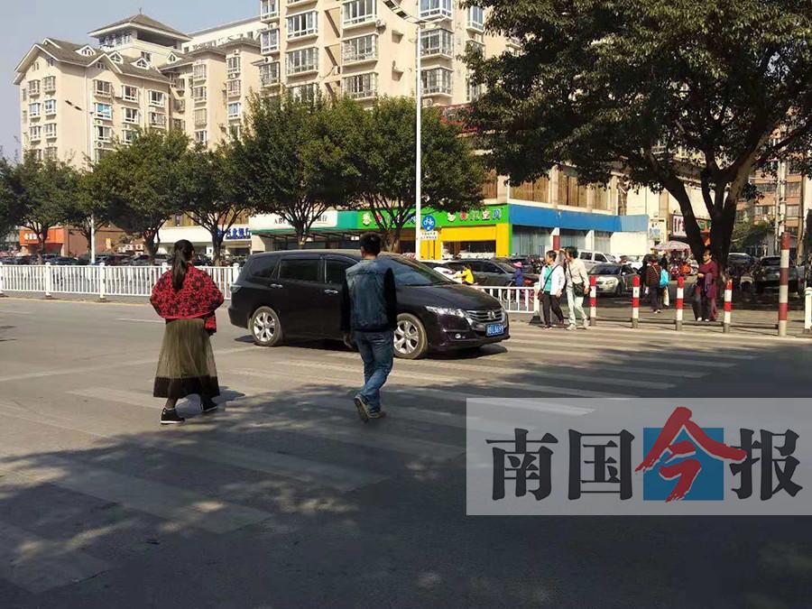 这些举动温暖街头 遇老人过斑马线司机更有耐心