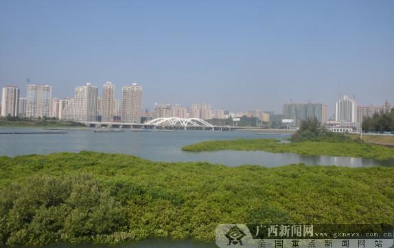 """[网记网友看港口]""""港工联动""""助推城市建设"""