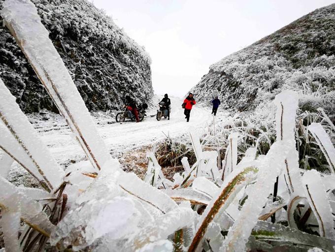 高清:环江万亩草甸现雾凇景观 宛若冰雪童话世界