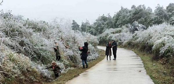 """桂林今年冰雪游来得""""早一些""""  天气渐冷温泉游""""升温"""""""