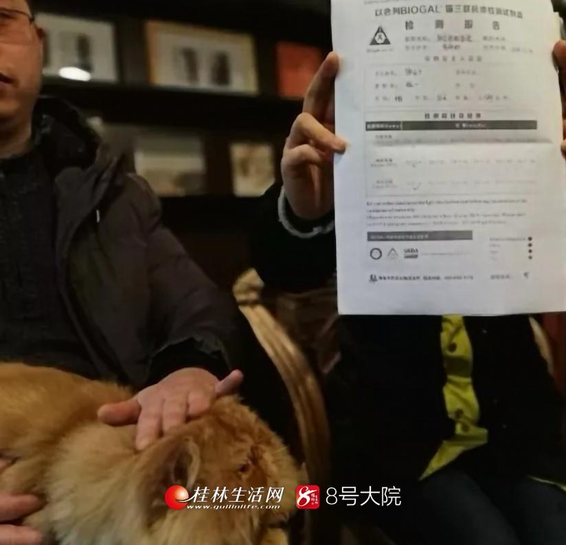 猫咪打完疫苗接连生病 相关部门:宠物店无资质营业