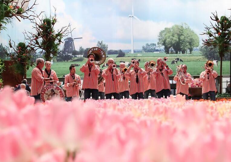 2019柏林国际绿色周开幕
