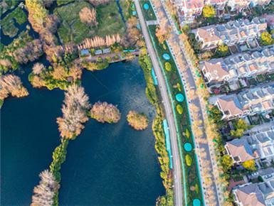 滇池水质2018年升至IV类