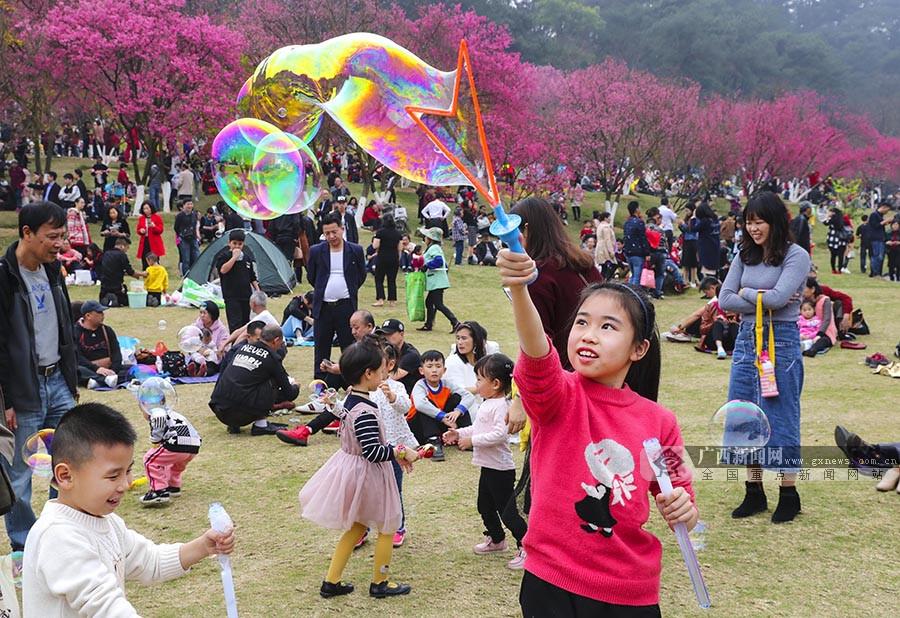和美壮乡韵 乐享中国年——全区各地新春文化旅游活动精彩纷呈
