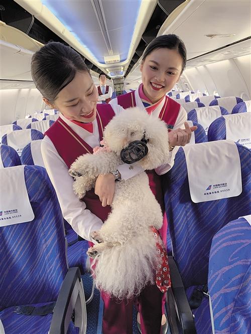 春节假期已结束 一起看看南宁迎来送往多少客人?