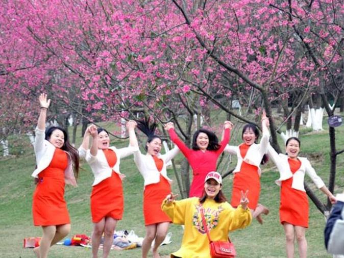 高清:春风惬意迎新年 南宁温暖如春