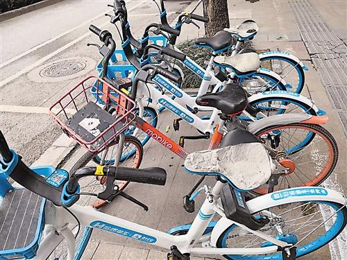 """300多辆哈啰共享单车坐垫遭""""剃头"""" 目前已报案"""