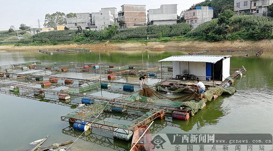 [新春走基层]大化净化集中式饮用水水源地环境