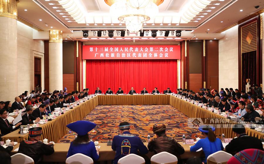 广西代表团审议政府工作报告 鹿心社陈武等参加审议并发言