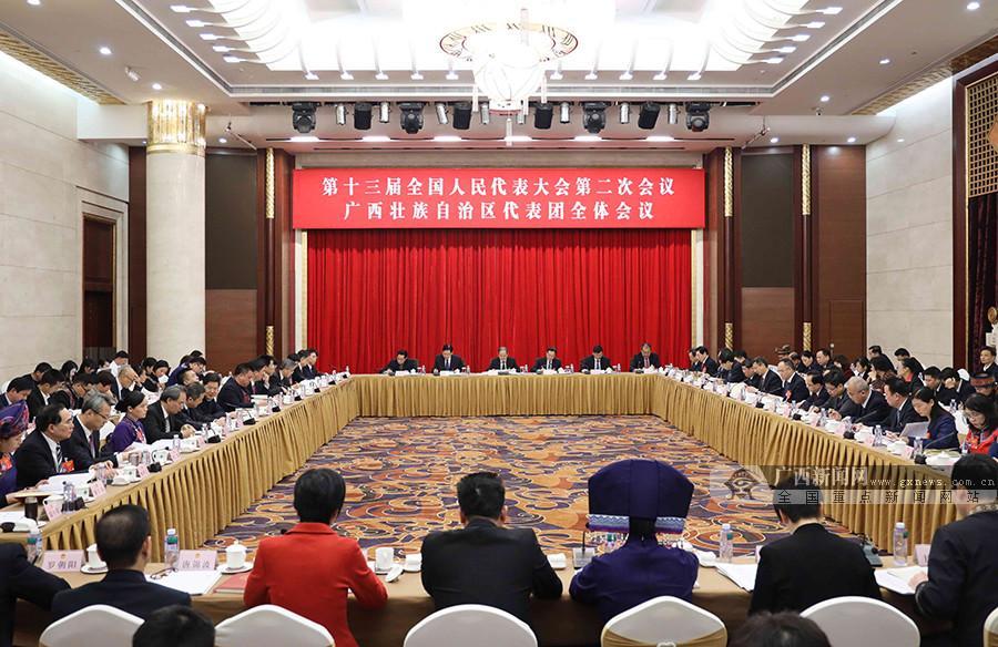 广西代表团审议外商投资法草案 鹿心社陈武等参加审议