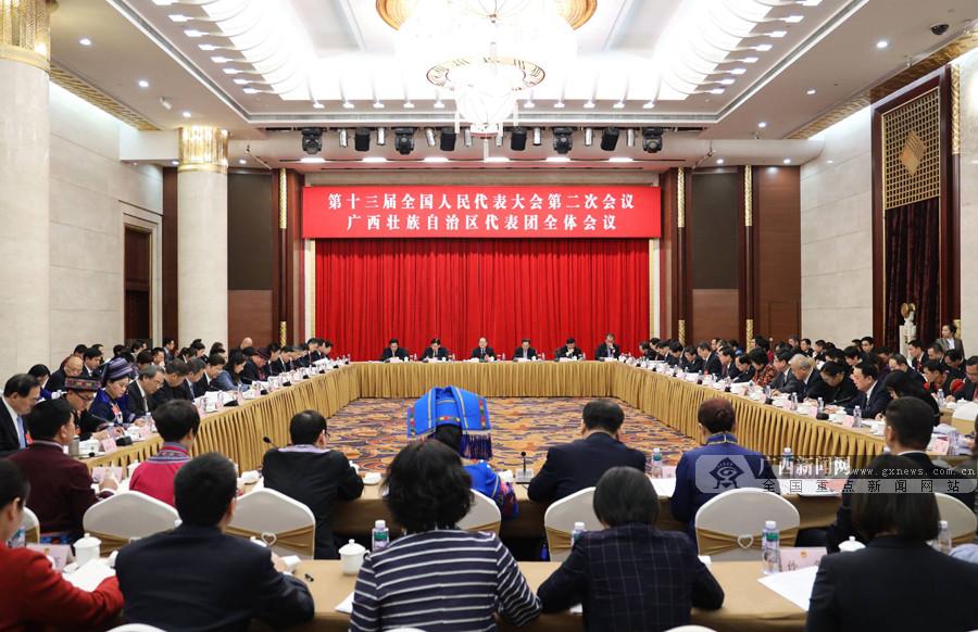广西代表团审议两高工作报告 鹿心社陈武等参加审议