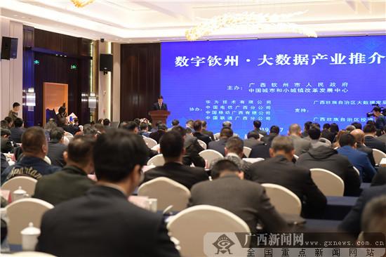 数字钦州·大数据产业推介会在杭州举行(图)