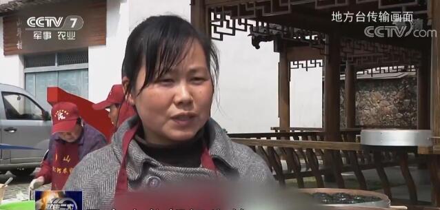 清明小吃成网红惠茹的故事 传统文化得沿袭